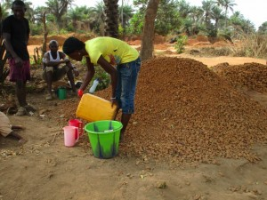 The Water Project : 13-sierraleone5084-pouring-palm-wine