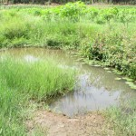 The Water Project : 2-sierraleone5089-water-source
