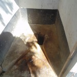 The Water Project : 5-kenya4617-latrines