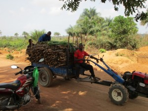 The Water Project : 9-sierraleone5084-hauling-sticks