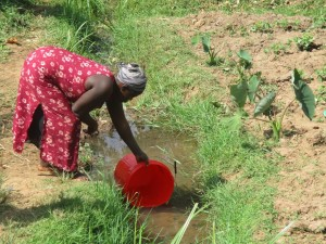 The Water Project : 3-kenya4583-fetching-water