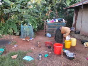 The Water Project : 4-kenya4583-dish-rack