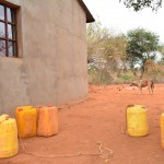 The Water Project: Wasya wa Athi New Well Project -