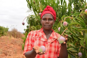 The Water Project : 11-kenya4498-fruit-of-the-sand-dam