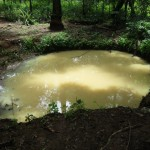 The Water Project : 5-sierraleone5093-stagnant-water