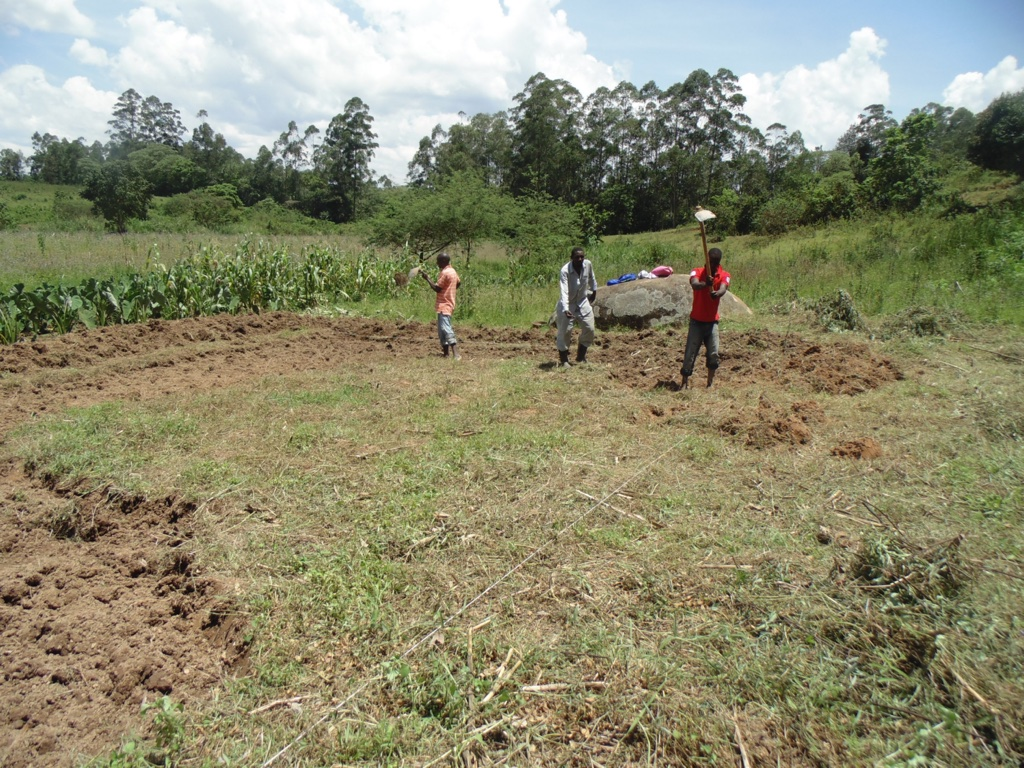 Community in process of constructing a fish pond next to Felix Kisengo Spring