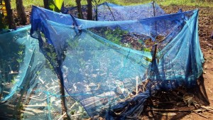 The Water Project : 13-kenya4590-mosquito-net