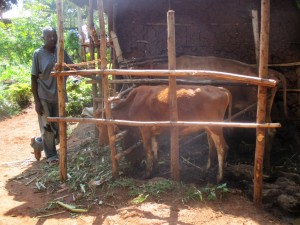 The Water Project : 13-kenya4592-animals