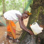 The Water Project : 5-sierraleone5093-training