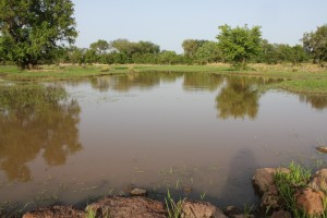 The Water Project : 1-burkinafaso9086-surface-water