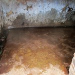 The Water Project: Ebukanga Secondary School -  Urinal Pit