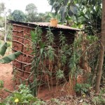 The Water Project: Shitungu Community -  Side Of Traditional Latrine