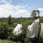 The Water Project: Shiamala Community -  No Clothesline