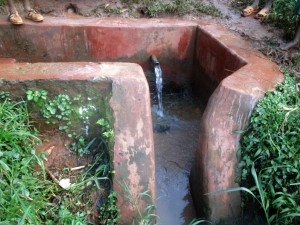 The Water Project:  Wamianda Spring