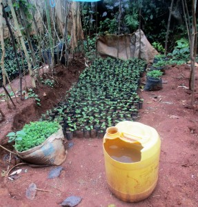 The Water Project:  Water For Small Farm