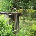 The Water Project: Emabungo Community -  Latrines