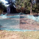 The Water Project: Bumavi Community -  Mosquito Nets