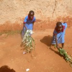 The Water Project: ADC Chanda Primary School -  Students Clean The Compound
