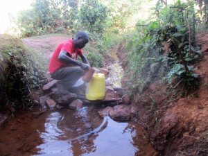 The Water Project:  Mr Andrew Nyanje Fetches Water From Amadi Spring