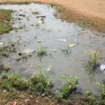The Water Project: Tintafor, Police Barracks C-Line Community -  Stagnant Water
