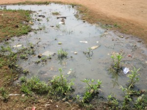 The Water Project:  Stagnant Water