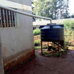 The Water Project: Bukhulunya Primary School -  Small Water Tank