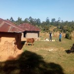 The Water Project: Bumavi Community, Shoso Mwoga Spring -  Local Household