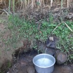 The Water Project: Murumba Community -  Muyokani Spring