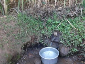 The Water Project:  Muyokani Spring