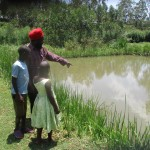 The Water Project: Mahanga Community -  Mr Vidija And His Fish Ponds