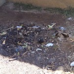 The Water Project : 16-kenya4708-garbage