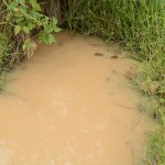 The Water Project: Mbindi Community B -  Another Dirty Water Source