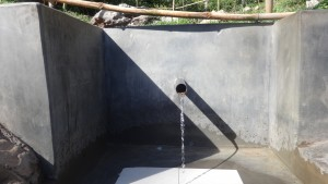 The Water Project : 19-kenya4696-protected-spring