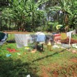 The Water Project: Mahanga Community -  Washing