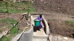 The Water Project : 20-kenya4696-protected-spring