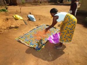 The Water Project:  Drying Grandnut