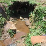 The Water Project : 3-kenya4720-omollo-spring