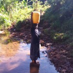 The Water Project: Shitaho Community C -  Mwikholo Spring