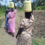 The Water Project: Eshiakhulo Community -  Carrying Water From Spring