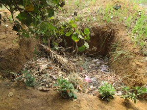 The Water Project : 7-sierraleone5110-compost-pit