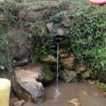 The Water Project: Shitungu Community B -  Charles Amala Spring