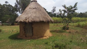 The Water Project:  Traditional Hut For Head Of Household