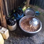 The Water Project: Maganyi Primary School -  A Kenyan Delicacy Githeri Prepared For Students