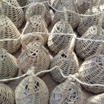The Water Project: Igogwa Community -  Quail Nests