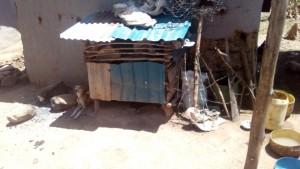 The Water Project : 15-kenya4725-dog-kennel