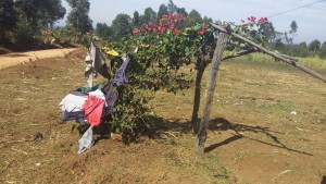 The Water Project : 15-kenya4729-clothesline