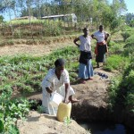 The Water Project: Shiamboko Community, Oluchinji Spring -  Mrs Oluchinji Fetching Water At The Spring