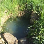 The Water Project: Shikoti Community A -  Amboka Spring
