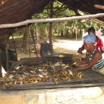 The Water Project: Mayaya Village A -  Drying Fish