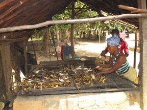 The Water Project:  Drying Fish